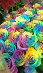 SATOMi 公式ブログ/バラ!? 画像1