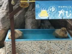 優希 公式ブログ/水族館の写真 画像1