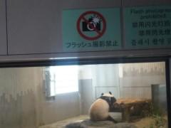 優希 公式ブログ/上野動物園のパンダさん 画像1
