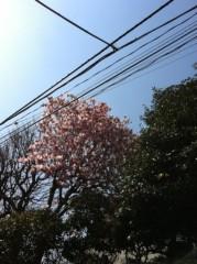 中村龍介 公式ブログ/THE ご飯会o(^-^)o 画像1
