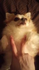中村龍介 公式ブログ/祝☆2歳o(^-^)o 画像2