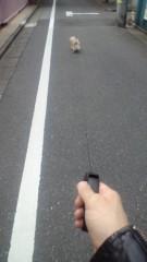 中村龍介 公式ブログ/THE 散歩o(^-^)o 画像2