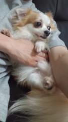 中村龍介 公式ブログ/THE 告知等々o(^-^)o 画像2