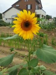 鈴木日和子 公式ブログ/*あなたの夢に応援歌* 画像1