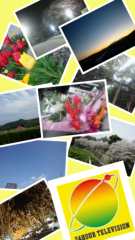 SO-TA 公式ブログ/愛は地球を救う 画像1