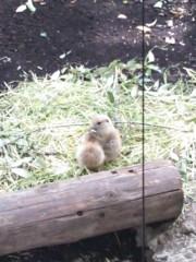 中村高華 公式ブログ/動物園 画像2