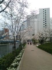 中村高華 公式ブログ/桜〜 画像2