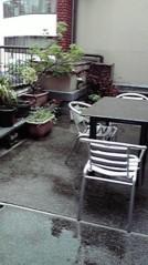 一石二鳥 公式ブログ/すごい雨でした 画像2
