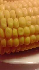 一石二鳥 公式ブログ/旬の食べ物 画像2