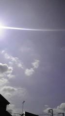一石二鳥 公式ブログ/いいお天気になりました 画像3