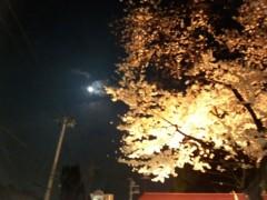 一石二鳥 公式ブログ/やっぱり桜はいいなぁ 画像3