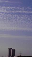 一石二鳥 公式ブログ/秋晴れです 画像1