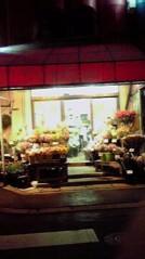一石二鳥 公式ブログ/お花買ってきました 画像1