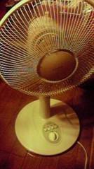 一石二鳥 公式ブログ/暑い日が続きます 画像1