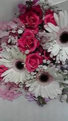 一石二鳥 公式ブログ/お花買ってきました 画像3