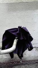 一石二鳥 公式ブログ/傘が… 画像1