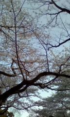芦原健介 公式ブログ/春が来たっぽい 画像1