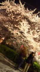 大森美知 公式ブログ/目黒川癒し満開 画像1
