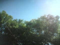 大森美知 公式ブログ/夏style 画像1