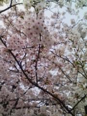 江波戸邦昌(オテンキ) 公式ブログ/〜天気の話〜 画像1