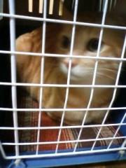 織田まな 公式ブログ/動物病院 画像2