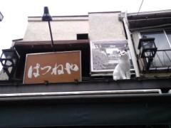 織田まな 公式ブログ/猫町巡礼� 画像3