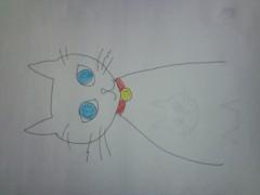 織田まな 公式ブログ/またまた猫 画像1