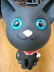 織田まな 公式ブログ/猫グッズ♪ 画像1