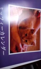 織田まな 公式ブログ/猫好きな人々… 画像1