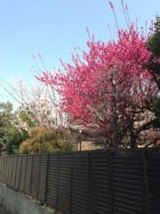 神條零柩 公式ブログ/友達の小屋 画像1