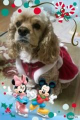 神條零柩 公式ブログ/クリスマスわんこ 画像1