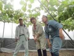 なお(だいなお) 公式ブログ/マスカットオブアレキサンドリア。in岡山県倉敷市 画像1