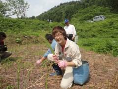 なお(だいなお) 公式ブログ/わらび収穫。in山形県西村山郡 画像1