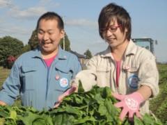 なお(だいなお) 公式ブログ/ほうれんそう収穫。in宮崎県児湯郡 画像1