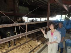 なお(だいなお) 公式ブログ/オリーブ牛。in香川県小豆島 画像1