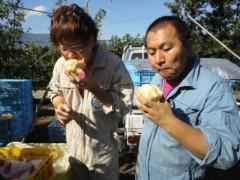 なお(だいなお) 公式ブログ/桃収穫&めっけもん広場。in和歌山県紀の川市 画像1