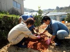 なお(だいなお) 公式ブログ/でこぽん苗木植え。in福浦さん圃場 画像1