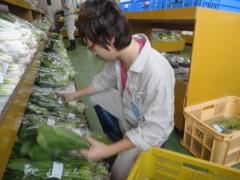 なお(だいなお) 公式ブログ/こかぶ収穫&あぐりハウスすずな。in青森県野辺地町 画像2