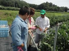 なお(だいなお) 公式ブログ/収穫体験。in兵庫県豊岡市 画像1