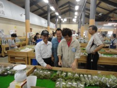 なお(だいなお) 公式ブログ/わらび収穫。in山形県西村山郡 画像3
