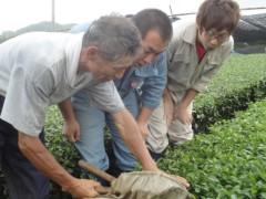 なお(だいなお) 公式ブログ/茶刈り&テクノグリーン。in奈良県奈良市 画像1