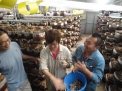 なお(だいなお) 公式ブログ/日本一。inしいたけ菌床供給センター 画像1