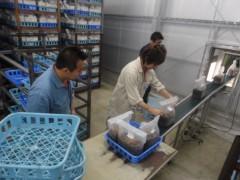 なお(だいなお) 公式ブログ/日本一。inしいたけ菌床供給センター 画像2