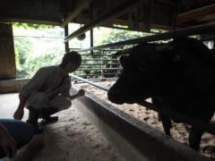 なお(だいなお) 公式ブログ/オリーブ牛。in香川県小豆島 画像2