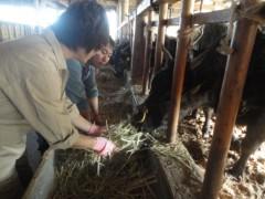 なお(だいなお) 公式ブログ/松坂牛。松坂市大宮田町 画像1
