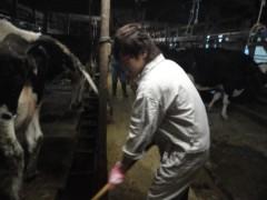 なお(だいなお) 公式ブログ/乳搾り体験。in新潟県佐渡市川茂 画像1