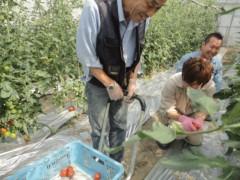 なお(だいなお) 公式ブログ/収穫、お手伝い。in徳島市 画像2