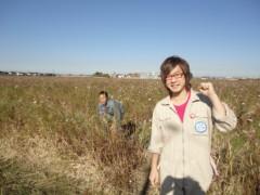 なお(だいなお) 公式ブログ/刈り取り作業。inコスモス畑 画像1