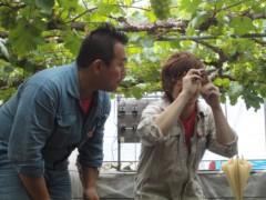 なお(だいなお) 公式ブログ/マスカットオブアレキサンドリア。in岡山県倉敷市 画像2