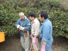 なお(だいなお) 公式ブログ/農家民泊。in泊町 画像1